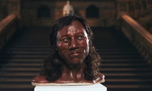 An updated reconstruction of Cheddar Man, which features dark skin, blue eyes, and dark hair.